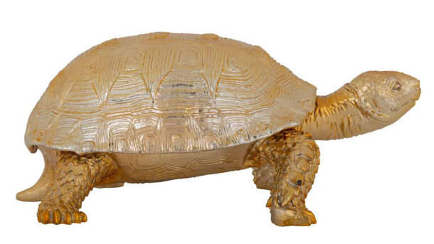 Decoratie box Turtle KB-0014 | Richmond Interiors