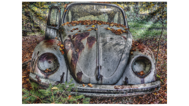 Wandkleed Abandoned Beetle