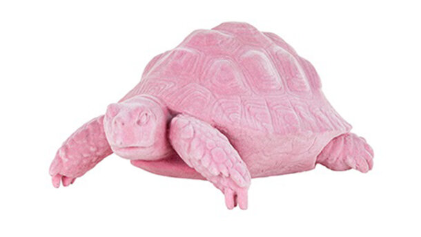 Beeld Schildpad Pokey Pink AD-0020 | Richmond Interiors