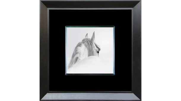 Framed Glass paard fg6060-21