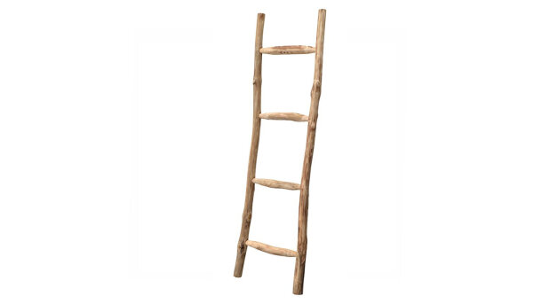 Ladder Larry