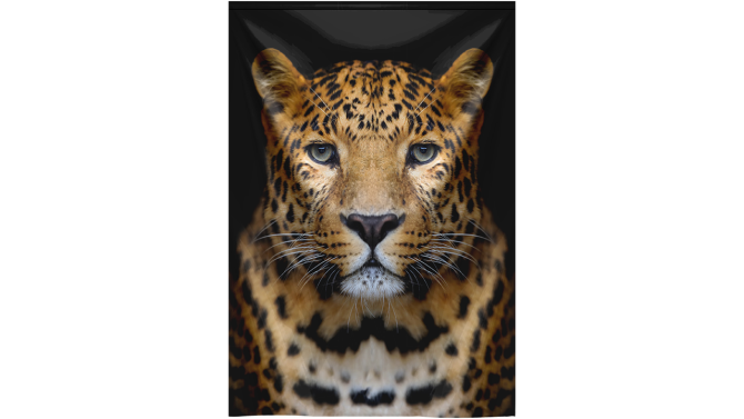 Wandkleed Close-up Leopard Portrait | MondiArt