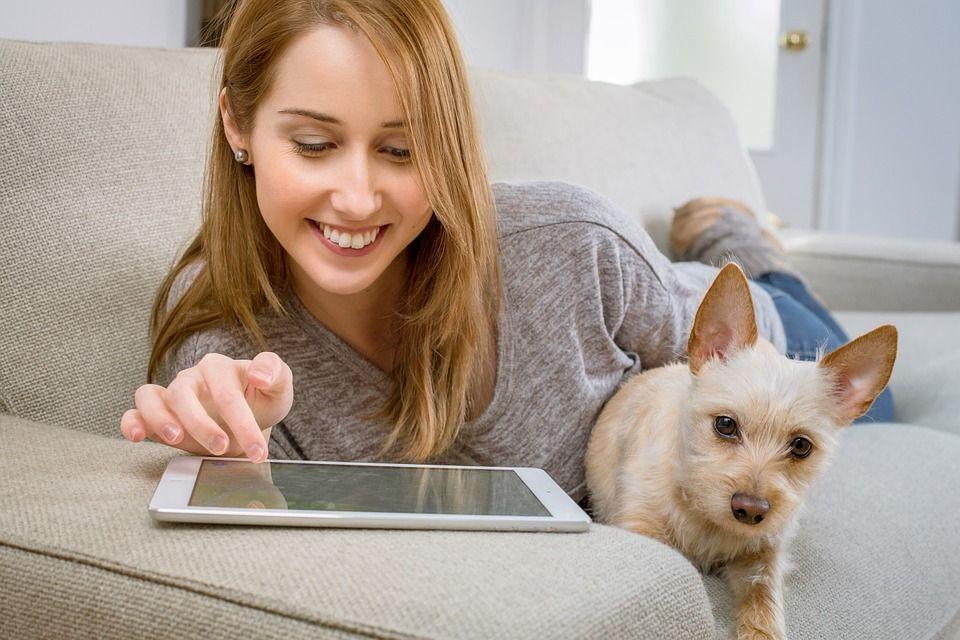 Meubels en huisdieren: tips voor honden en katten in huis